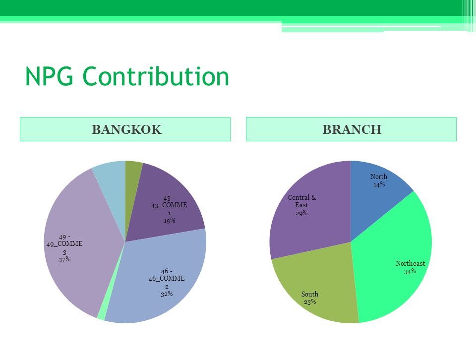 NPG Contribution BANGKOKBRANCH