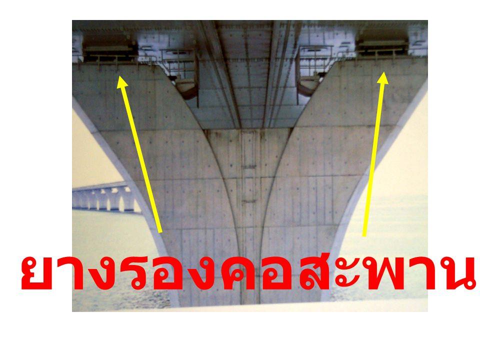 ยางรองคอสะพาน