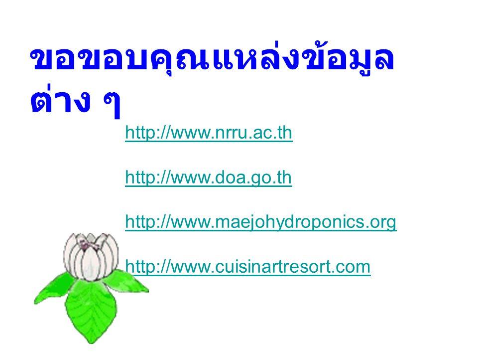 ขอขอบคุณแหล่งข้อมูล ต่าง ๆ http://www.nrru.ac.th http://www.doa.go.th http://www.maejohydroponics.org http://www.cuisinartresort.com