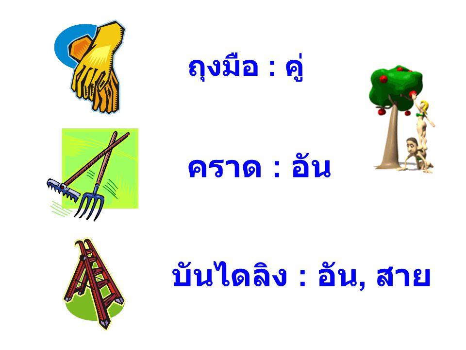 ถุงมือ : คู่ คราด : อัน บันไดลิง : อัน, สาย