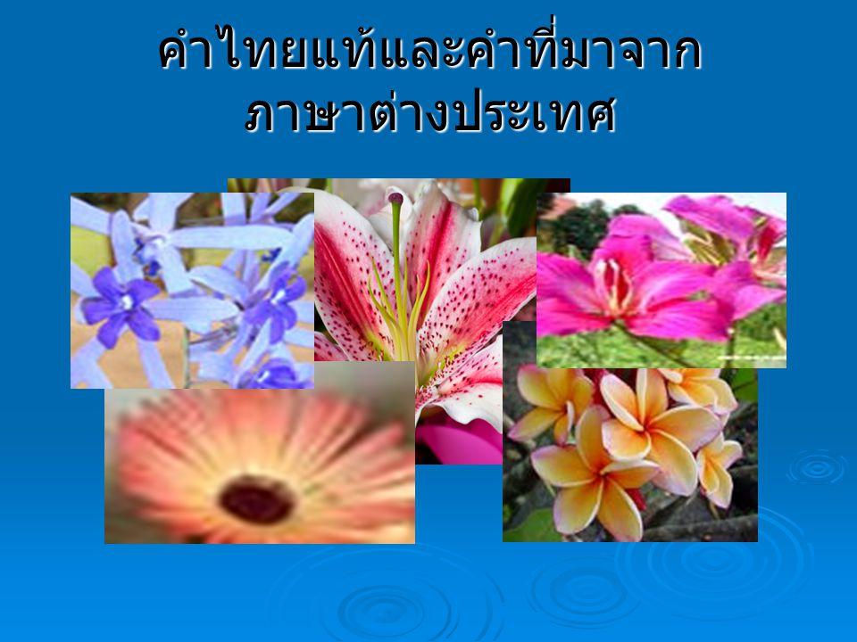 คำไทยแท้และคำที่มาจาก ภาษาต่างประเทศ