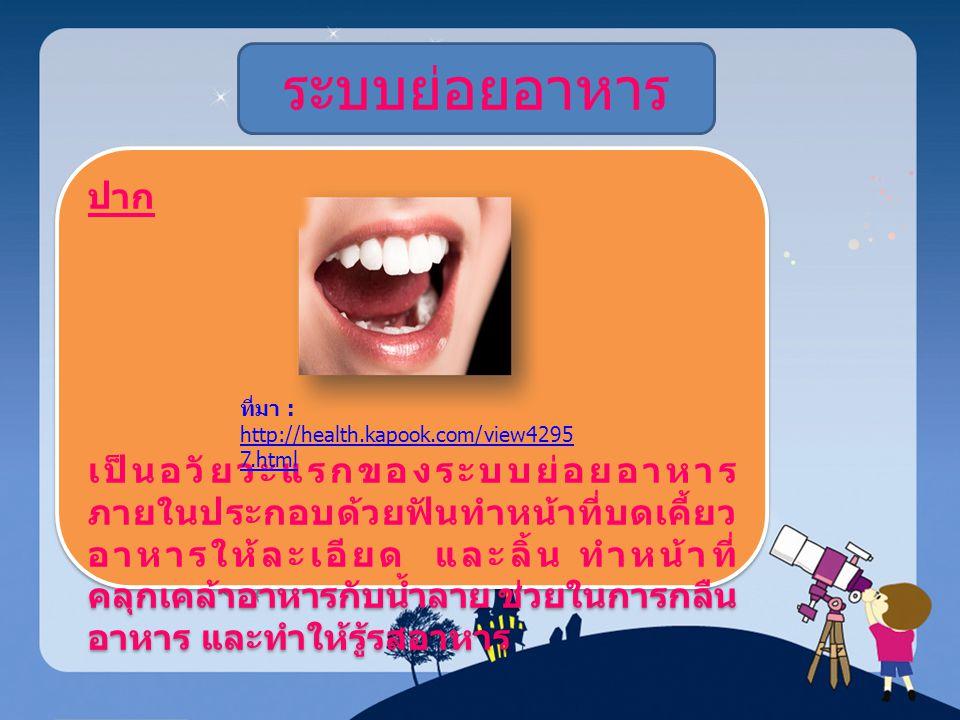 ระบบย่อยอาหาร ปาก เป็นอวัยวะแรกของระบบย่อยอาหาร ภายในประกอบด้วยฟันทำหน้าที่บดเคี้ยว อาหารให้ละเอียด และลิ้น ทำหน้าที่ คลุกเคล้าอาหารกับน้ำลาย ช่วยในกา