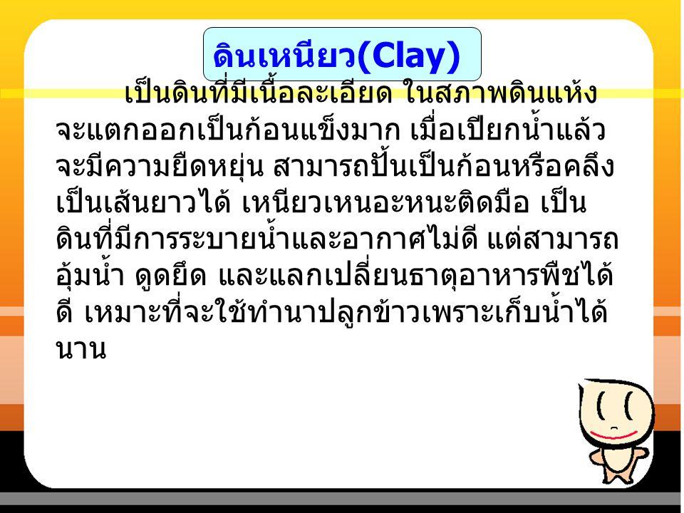 ดิน เหนียว (Clay) ภาพแสดง ลักษณะดินเหนียว ที่มา : http://pirun.ku.ac.th/~b5310703306/p4.html