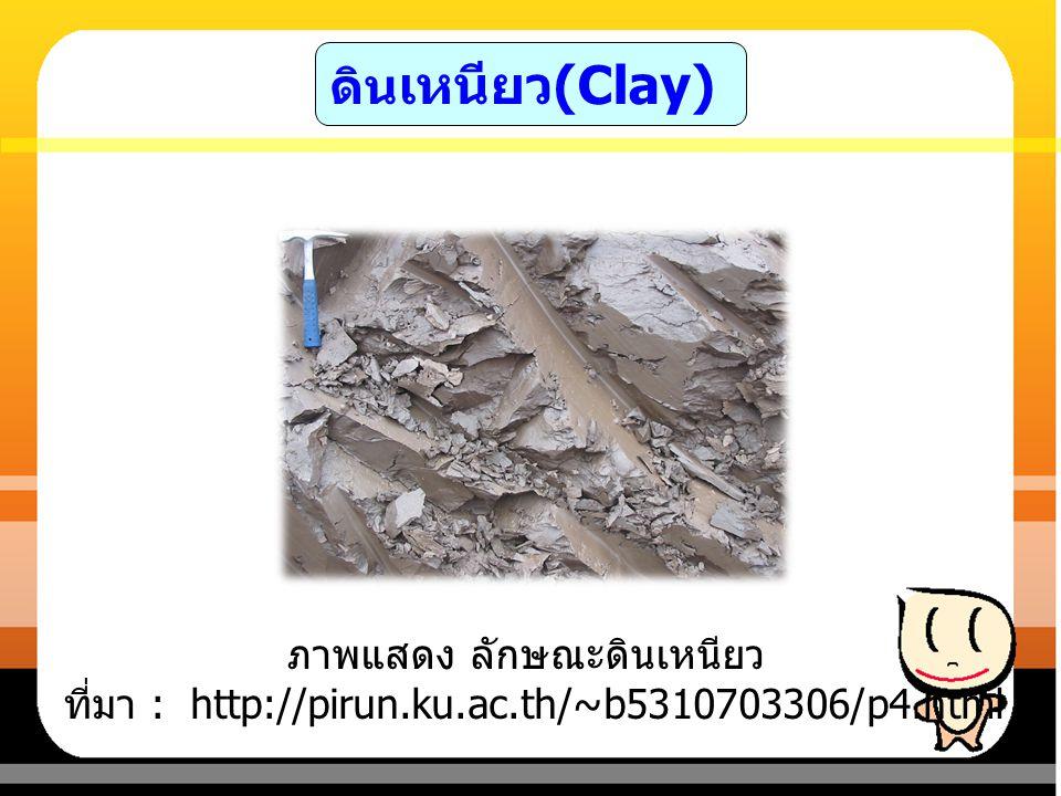 ดินร่วน (Loam) เป็นดินที่เนื้อดินค่อนข้าง ละเอียดนุ่มมือ ในสภาพดินแห้งจะจับกันเป็นก้อนแข็ง พอประมาณ ในสภาพดินชื้นจะยืดหยุ่นได้บ้าง เมื่อสัมผัสหรือคลึงดินจะรู้สึกนุ่มมือแต่อาจจะ รู้สึกสากมืออยู่บ้างเล็ก น้อย เมื่อกำดินให้แน่น ในฝ่ามือแล้วคลายมือออก ดินจะจับกันเป็นก้อน ไม่แตกออกจากกัน เป็นดินที่มีการระบายน้ำได้ ดีปานกลาง จัดเป็นเนื้อดินที่มีความเหมาะสม สำหรับการเพาะปลูก