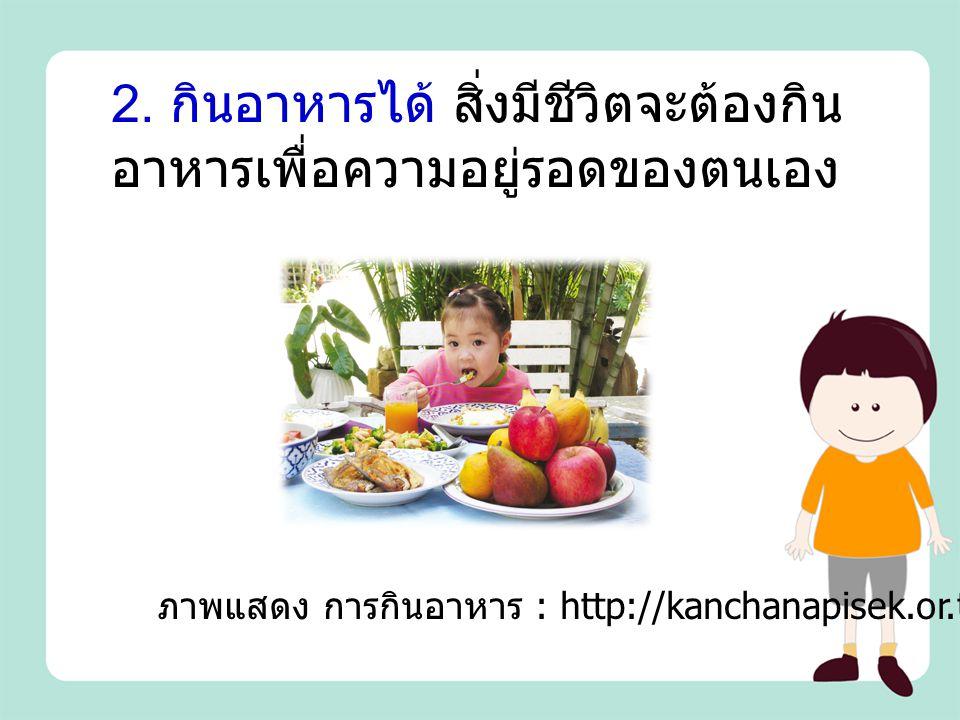 2. กินอาหารได้ สิ่งมีชีวิตจะต้องกิน อาหารเพื่อความอยู่รอดของตนเอง ภาพแสดง การกินอาหาร : http://kanchanapisek.or.th