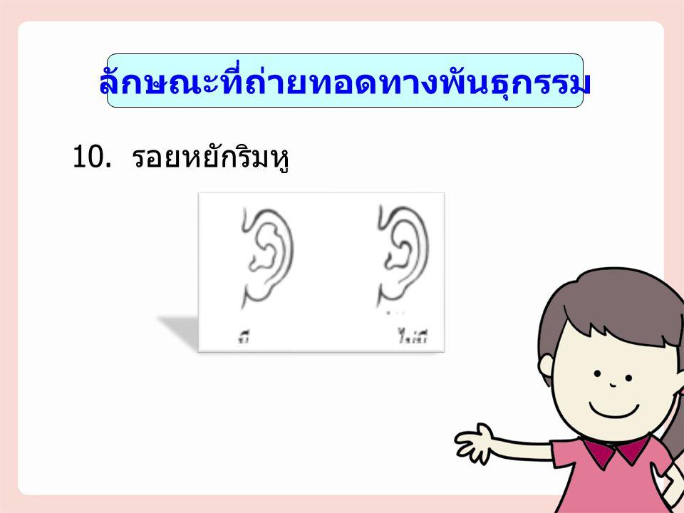 ลักษณะที่ถ่ายทอดทางพันธุกรรม 10. รอยหยักริมหู