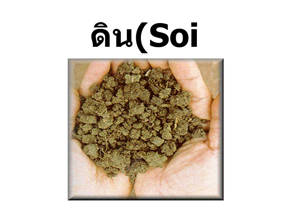 ดิน เป็นสิ่งแวดล้อมที่เกิดขึ้นเองโดยธรรมชาติ เกิดจากการสลายตัวผุพัง ของหินชนิดต่าง ๆ โดยใช้เวลาที่นานมาก หินที่ สลายตัวผุกร่อนนี้จะมีขนาด ต่าง ๆ กัน เมื่อผสมรวมกับซากพืช ซากสัตว์ น้ำ อากาศ ก็กลายเป็นเนื้อดินซึ่งส่วนประกอบ เหล่านี้จะมากน้อยแตกต่างกันไปตามชนิดของ ดิน