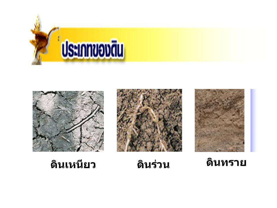 ดินเหนียวดินร่วน ดินทราย