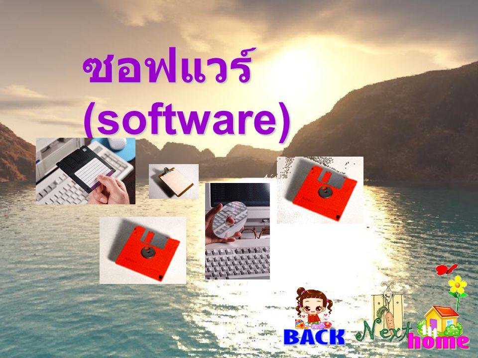 ซอฟแวร์ (software)