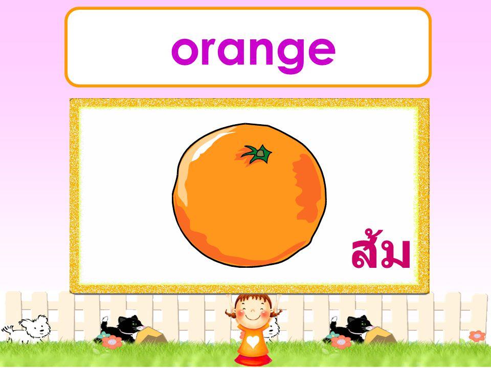_ _ _ _ _ Fruit
