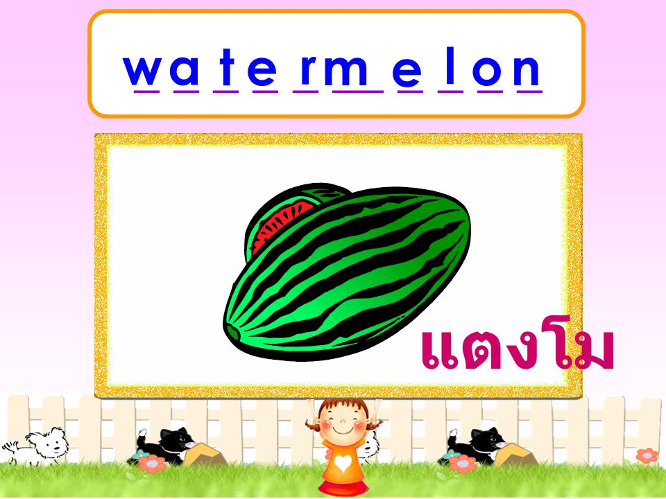 watermelon แตงโม