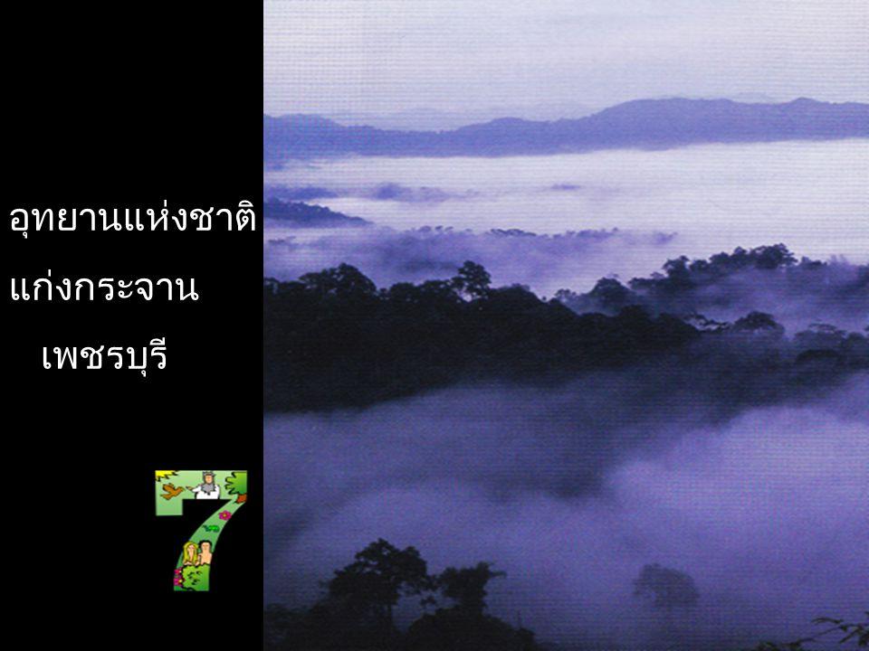 อุทยานแห่งชาติภูหินร่องกล้า เพชรบูรณ์