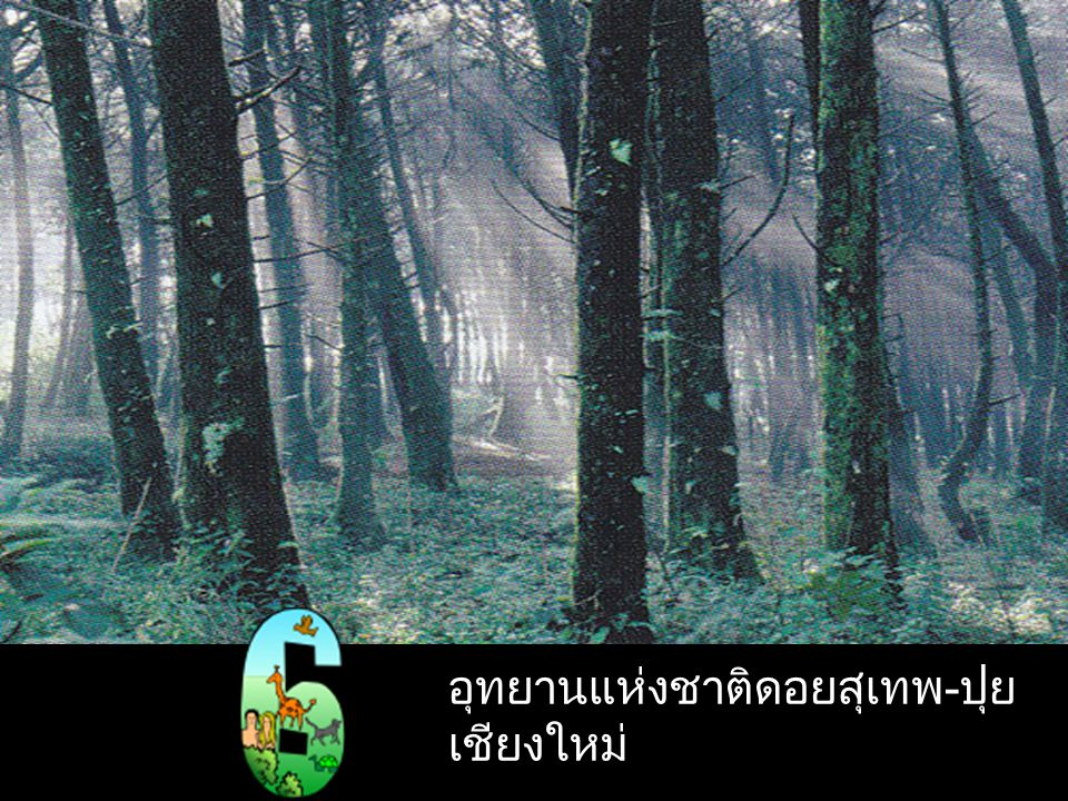 อุทยานแห่งชาติ แก่งกระจาน เพชรบุรี