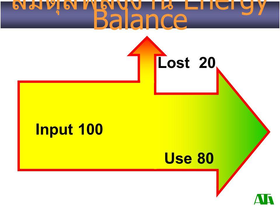 สมดุลพลังงาน Energy Balance Use 80 Lost 20 Input 100