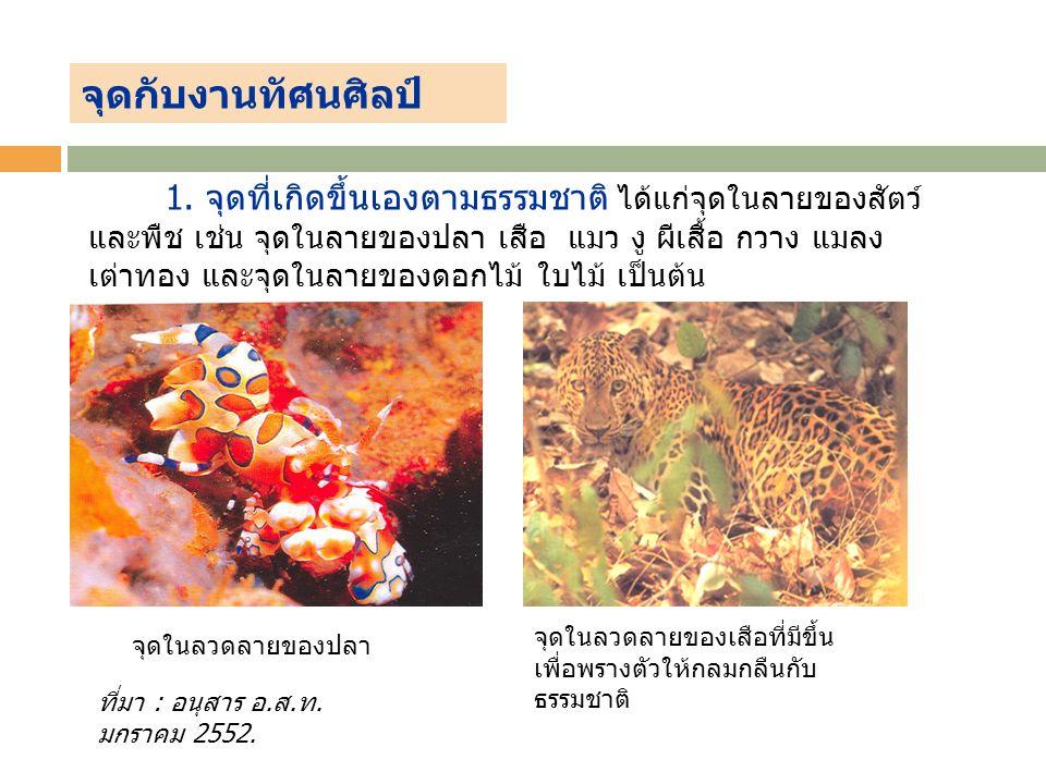 จุดในลวดลายของปลา จุดในลวดลายของเสือที่มีขึ้น เพื่อพรางตัวให้กลมกลืนกับ ธรรมชาติ ที่มา : อนุสาร อ. ส. ท. มกราคม 2552. 1. จุดที่เกิดขึ้นเองตามธรรมชาติ