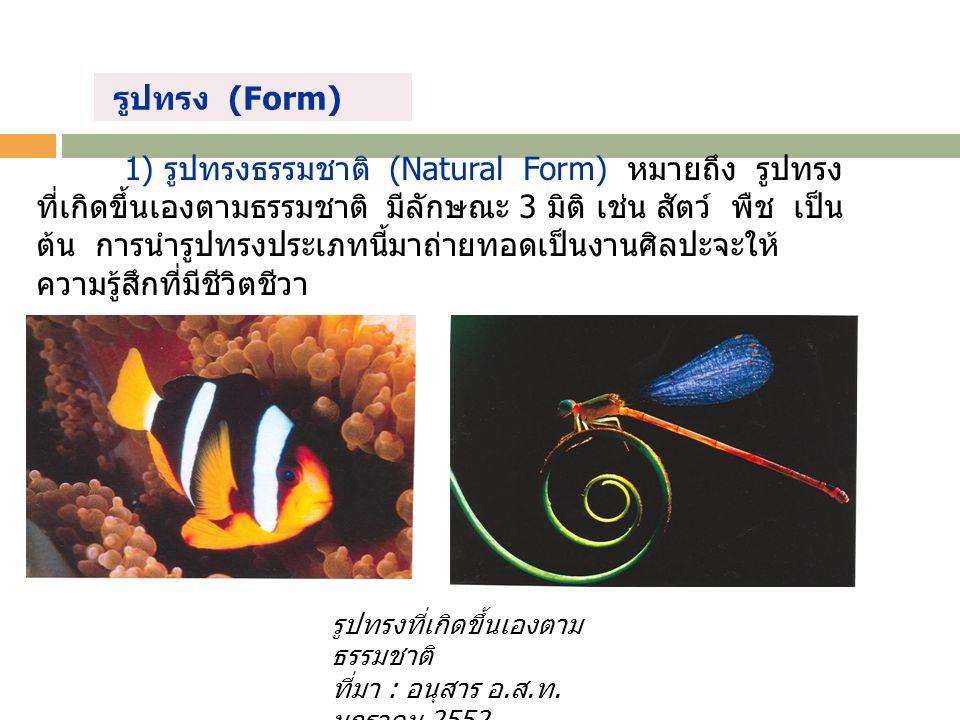 รูปทรงที่เกิดขึ้นเองตาม ธรรมชาติ ที่มา : อนุสาร อ. ส. ท. มกราคม 2552. 1) รูปทรงธรรมชาติ (Natural Form) หมายถึง รูปทรง ที่เกิดขึ้นเองตามธรรมชาติ มีลักษ