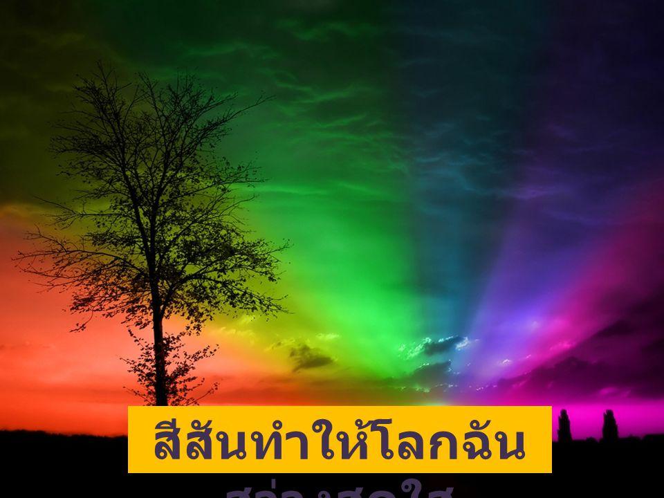 สีสันทำให้โลกฉัน สว่างสดใส