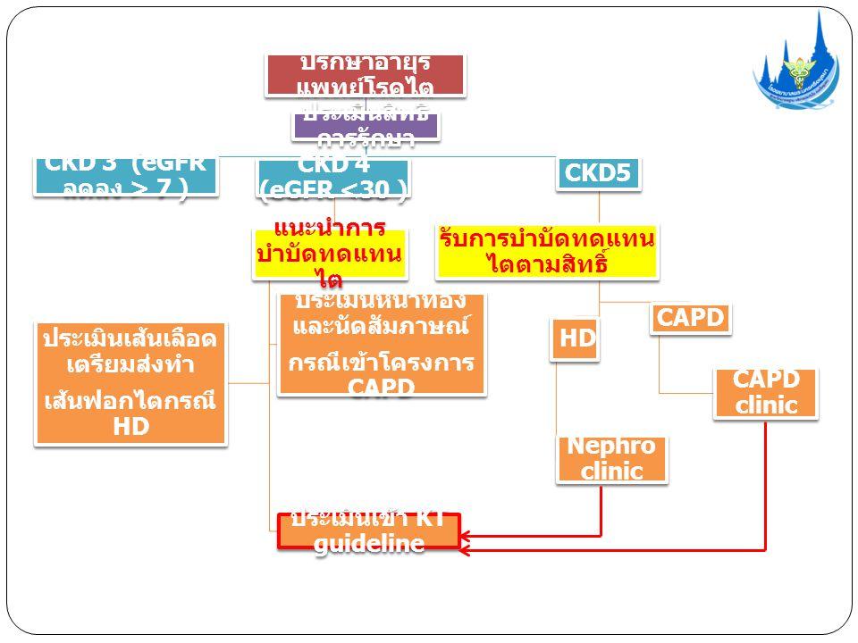 ปรึกษาอายุร แพทย์โรคไต ประเมินสิทธิ การรักษา CKD 3 (eGFR ลดลง > 7 ) CKD 4 (eGFR <30 ) แนะนำการ บำบัดทดแทน ไต ประเมินเส้นเลือด เตรียมส่งทำ เส้นฟอกไตกรณี HD ประเมินหน้าท้อง และนัดสัมภาษณ์ กรณีเข้าโครงการ CAPD ประเมินเข้า KT guideline CKD5 รับการบำบัดทดแทน ไตตามสิทธิ์ HD Nephro clinic CAPD CAPD clinic