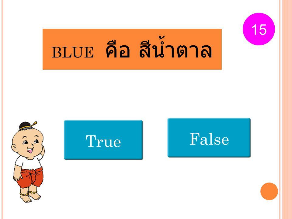BLUE คือ สีน้ำตาล True False 15
