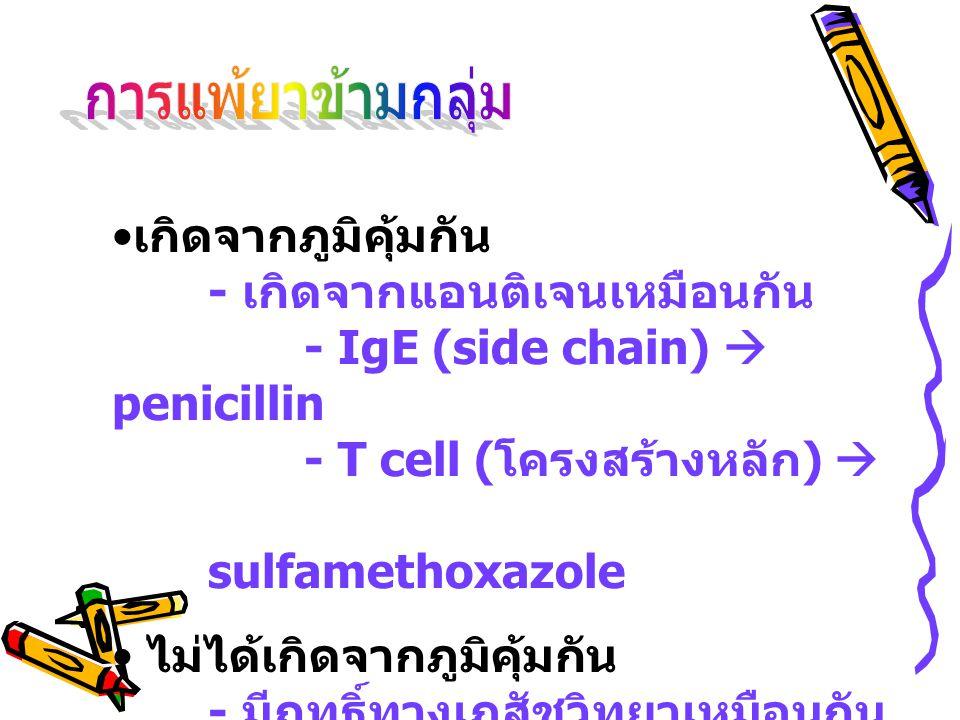 • เกิดจากภูมิคุ้มกัน - เกิดจากแอนติเจนเหมือนกัน - IgE (side chain)  penicillin - T cell ( โครงสร้างหลัก )  sulfamethoxazole • ไม่ได้เกิดจากภูมิคุ้มก