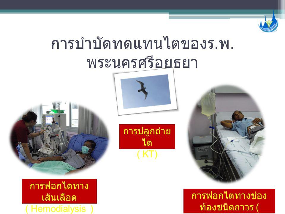 การบำบัดทดแทนไตของร. พ. พระนครศรีอยุธยา การฟอกไตทาง เส้นเลือด ( Hemodialysis ) การฟอกไตทางช่อง ท้องชนิดถาวร ( CAPD ) การปลูกถ่าย ไต ( KT)