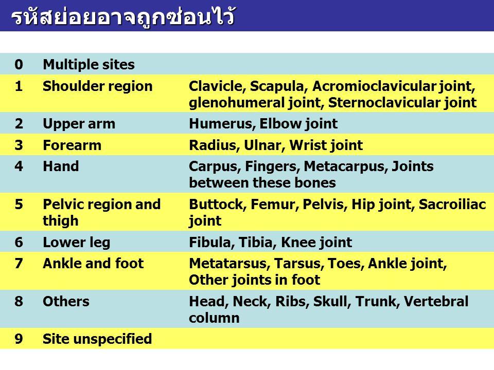 รหัสย่อยอาจถูกซ่อนไว้ รหัสย่อยอาจถูกซ่อนไว้ 0Multiple sites 1Shoulder regionClavicle, Scapula, Acromioclavicular joint, glenohumeral joint, Sternoclav