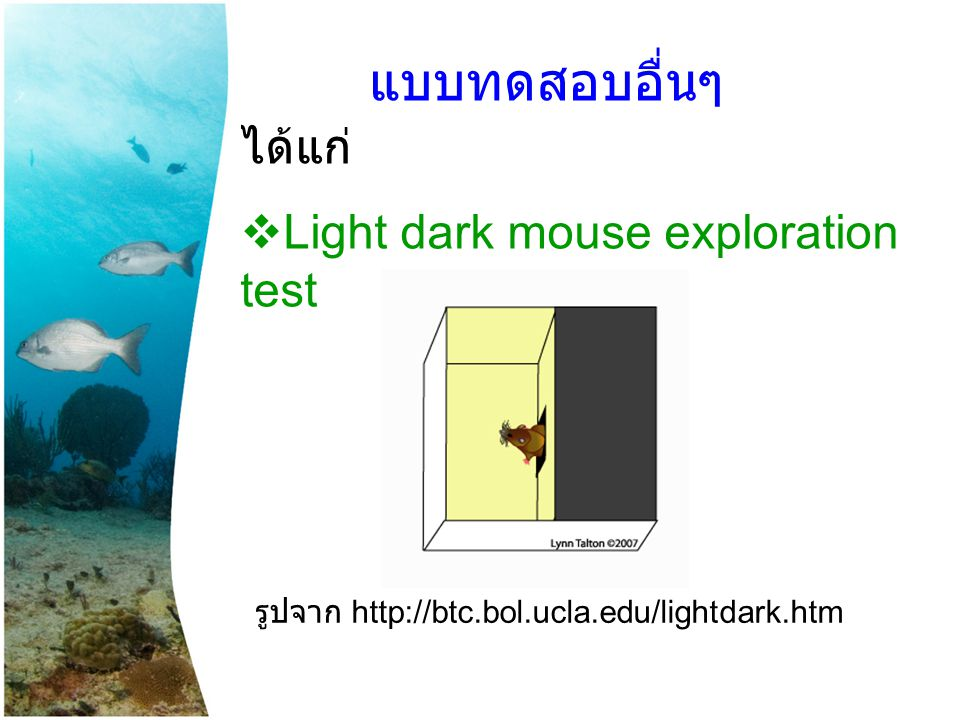 ได้แก่  Light dark mouse exploration test แบบทดสอบอื่นๆ รูปจาก http://btc.bol.ucla.edu/lightdark.htm