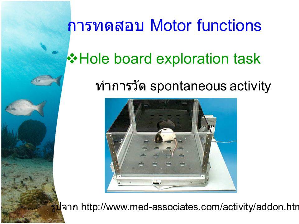 การทดสอบ Motor functions  Hole board exploration task ทำการวัด spontaneous activity รูปจาก http://www.med-associates.com/activity/addon.htm
