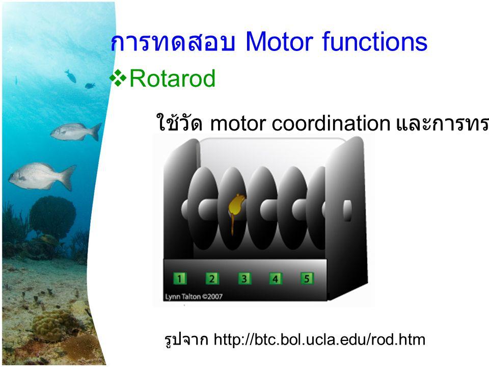 การทดสอบ Motor functions  Rotarod ใช้วัด motor coordination และการทรงตัว รูปจาก http://btc.bol.ucla.edu/rod.htm