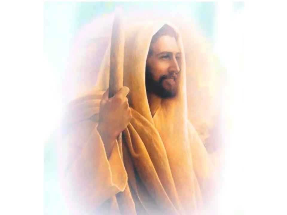 การเกิดใหม่ด้วยน้ำและพระจิต พระเยซูเจ้าตรัสตอบว่า เราบอกความจริงแก่ท่านว่า ไม่มีใคร เห็นพระอาณาจักรของพระเจ้า ถ้าเขาไม่ได้ เกิดใหม่ นิโคเดมัสทูลถามว่า คนชราแล้วจะเกิดใหม่ได้อย่างไร .