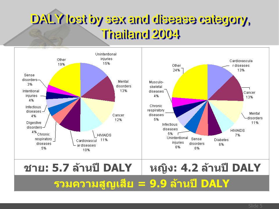 Slide 5 DALY lost by sex and disease category, Thailand 2004 ชาย : 5.7 ล้านปี DALY หญิง : 4.2 ล้านปี DALY รวมความสูญเสีย = 9.9 ล้านปี DALY