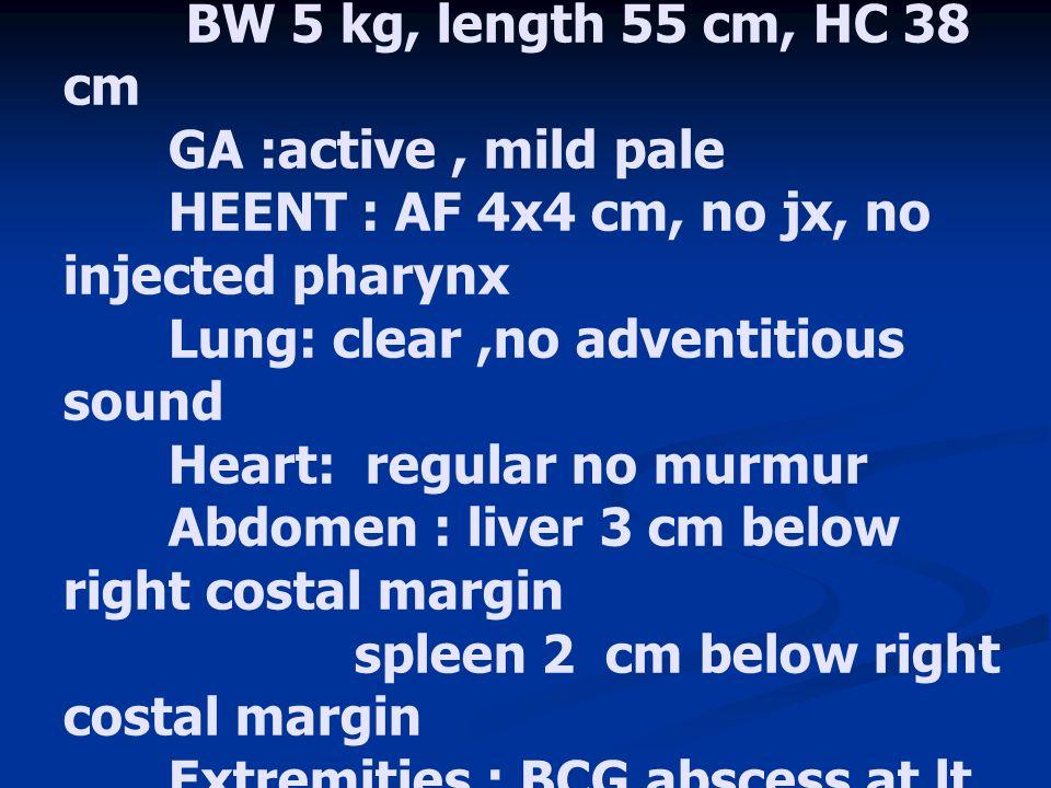 PE ;V/S: Temp = 37.8 c, RR = 46 /min, PR= 110 /min, BP = 90 / 50 mmHg BW 5 kg, length 55 cm, HC 38 cm GA :active, mild pale HEENT : AF 4x4 cm, no jx,