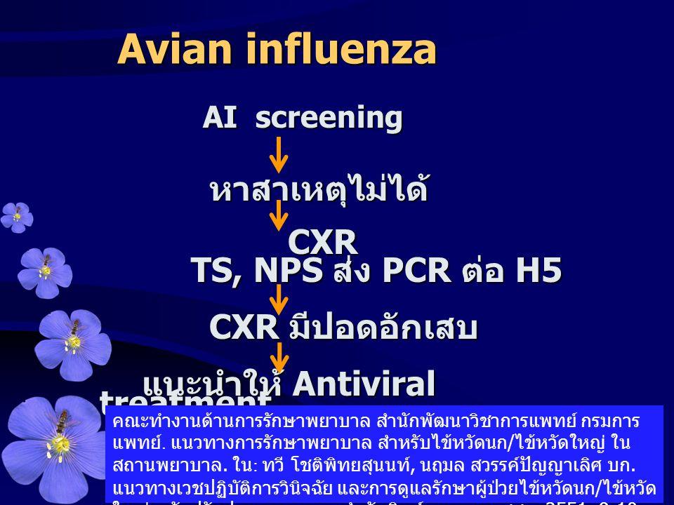 AI screening AI screeningหาสาเหตุไม่ได้ CXR CXR TS, NPS ส่ง PCR ต่อ H5 TS, NPS ส่ง PCR ต่อ H5 CXR มีปอดอักเสบ แนะนำให้ Antiviral treatment Avian influ