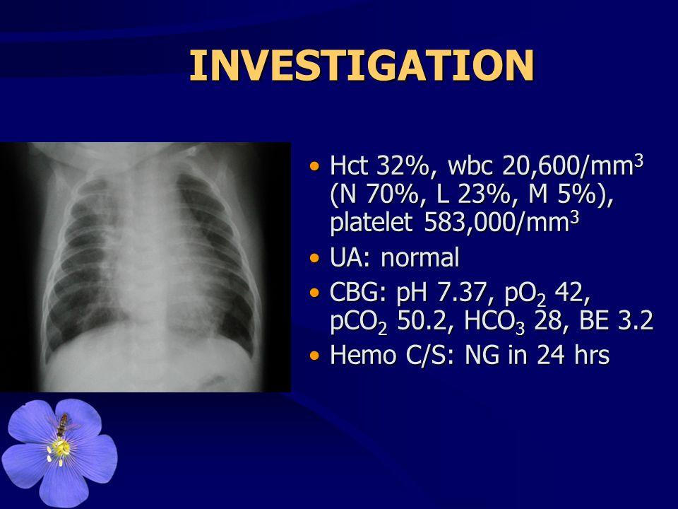 INVESTIGATION •Hct 32%, wbc 20,600/mm 3 (N 70%, L 23%, M 5%), platelet 583,000/mm 3 •UA: normal •CBG: pH 7.37, pO 2 42, pCO 2 50.2, HCO 3 28, BE 3.2 •