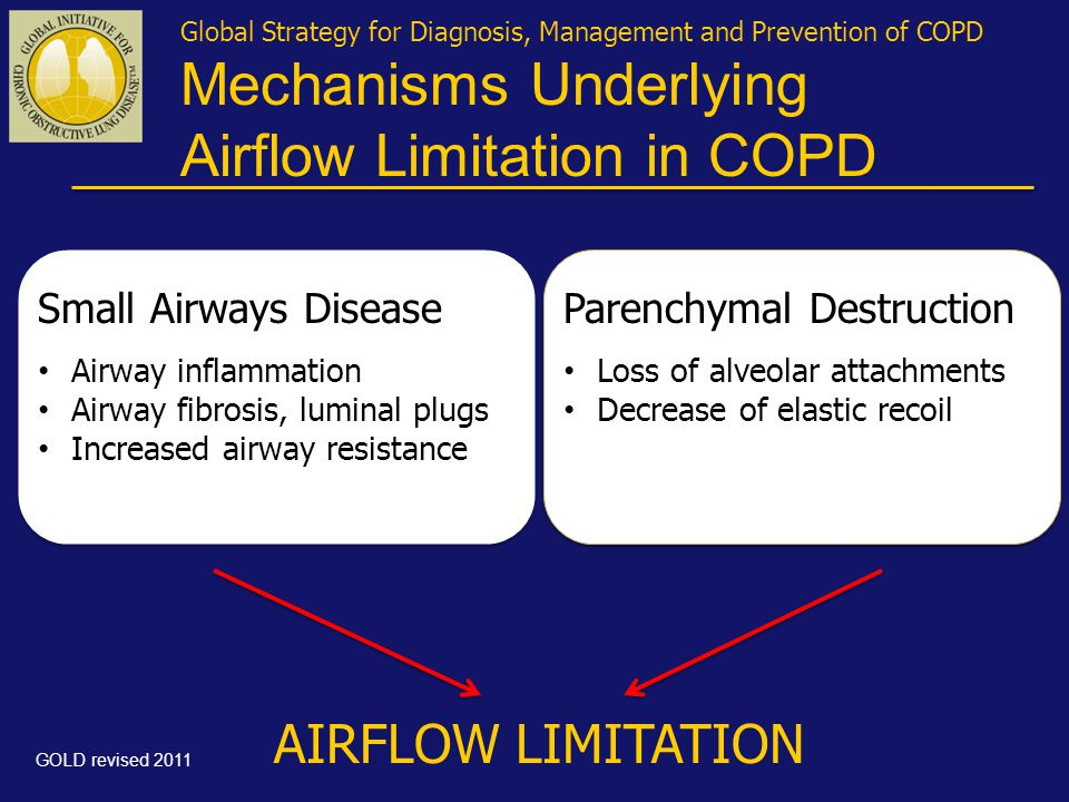 Global Strategy for Diagnosis, Management and Prevention of COPD Mechanisms Underlying Airflow Limitation in COPD Small Airways Disease • Airway inflammation • Airway fibrosis, luminal plugs • Increased airway resistance Parenchymal Destruction • Loss of alveolar attachments • Decrease of elastic recoil AIRFLOW LIMITATION GOLD revised 2011