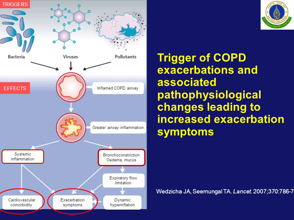 Cardiovascular comorbidity Exacerbation symptoms Dynamic hyperinflation Expiratory flow limitation Bronchoconstriction Oedema, mucus Systemic inflammation Greater airway inflammation Inflamed COPD airway TRIGGERS EFFECTS Trigger of COPD exacerbations and associated pathophysiological changes leading to increased exacerbation symptoms Wedzicha JA, Seemungal TA.