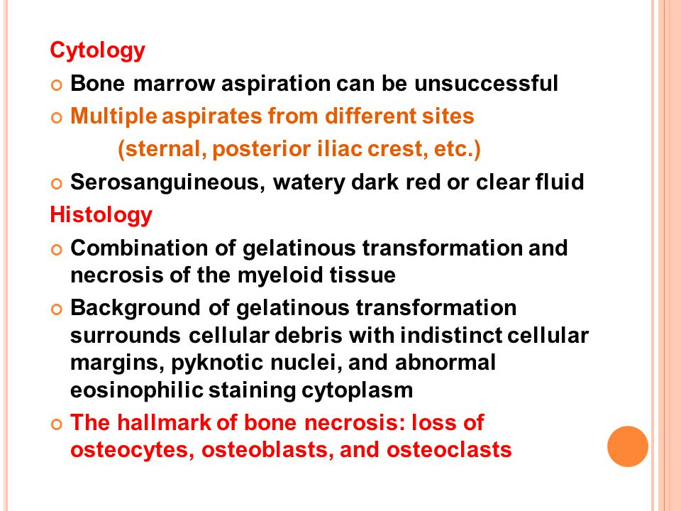 Cytology Bone marrow aspiration can be unsuccessful Multiple aspirates from different sites (sternal, posterior iliac crest, etc.) Serosanguineous, wa