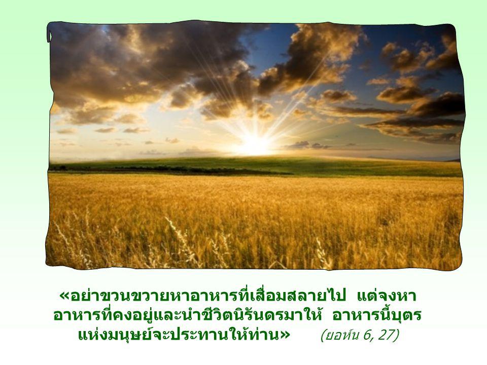 «อย่าขวนขวายหาอาหารที่เสื่อมสลายไป แต่จงหา อาหารที่คงอยู่และนำชีวิตนิรันดรมาให้ อาหารนี้บุตร แห่งมนุษย์จะประทานให้ท่าน» (ยอห์น 6, 27)