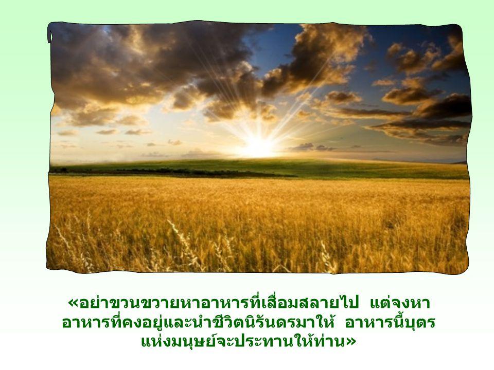 พวกเขาเห็นพระองค์เป็นผู้วิเศษ เป็นพระเมสสิยาห์ เจ้าแผ่นดิน สามารถบันดาลอาหารด้านวัตถุให้ได้อย่าง อุดมและราคาถูก ด้วยเหตุผลนี้พระเยซูเจ้าจึงทรงกล่าว กั