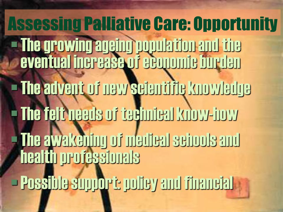 Assessing Palliative Care: Opportunity §The growing ageing population and the eventual increase of economic burden §The advent of new scientific knowledge §The felt needs of technical know-how §The awakening of medical schools and health professionals §Possible support: policy and financial