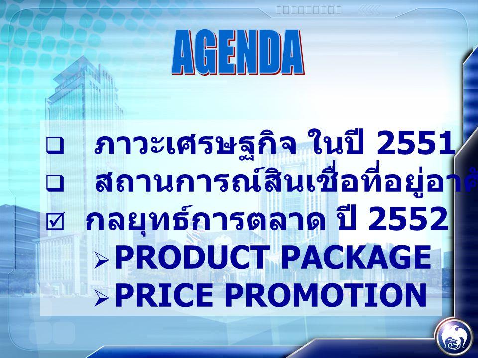  ภาวะเศรษฐกิจ ในปี 2551  สถานการณ์สินเชื่อที่อยู่อาศัย ปี 2551  กลยุทธ์การตลาด ปี 2552  PRODUCT PACKAGE  PRICE PROMOTION