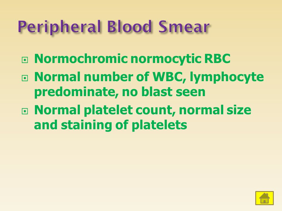  Normochromic normocytic RBC  Normal number of WBC, lymphocyte predominate, no blast seen  Normal platelet count, normal size and staining of platelets