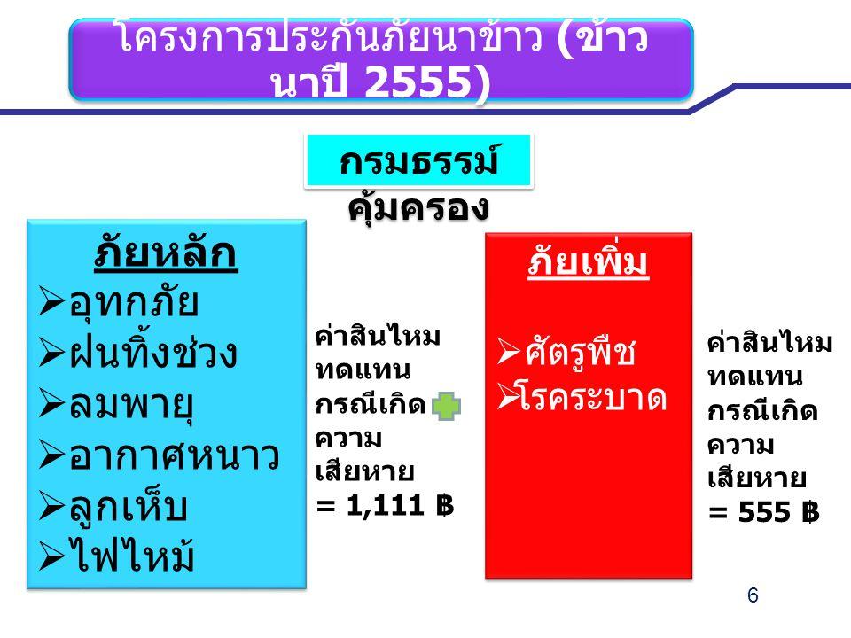 6 โครงการประกันภัยนาข้าว ( ข้าว นาปี 2555) กรมธรรม์ คุ้มครอง ภัยหลัก  อุทกภัย  ฝนทิ้งช่วง  ลมพายุ  อากาศหนาว  ลูกเห็บ  ไฟไหม้ ภัยหลัก  อุทกภัย