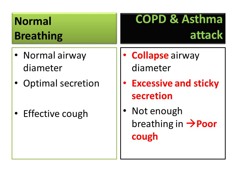 Normal Breathing Normal Breathing • Normal airway diameter • Optimal secretion • Effective cough COPD & Asthma attack • Collapse airway diameter • Excessive and sticky secretion • Not enough breathing in  Poor cough