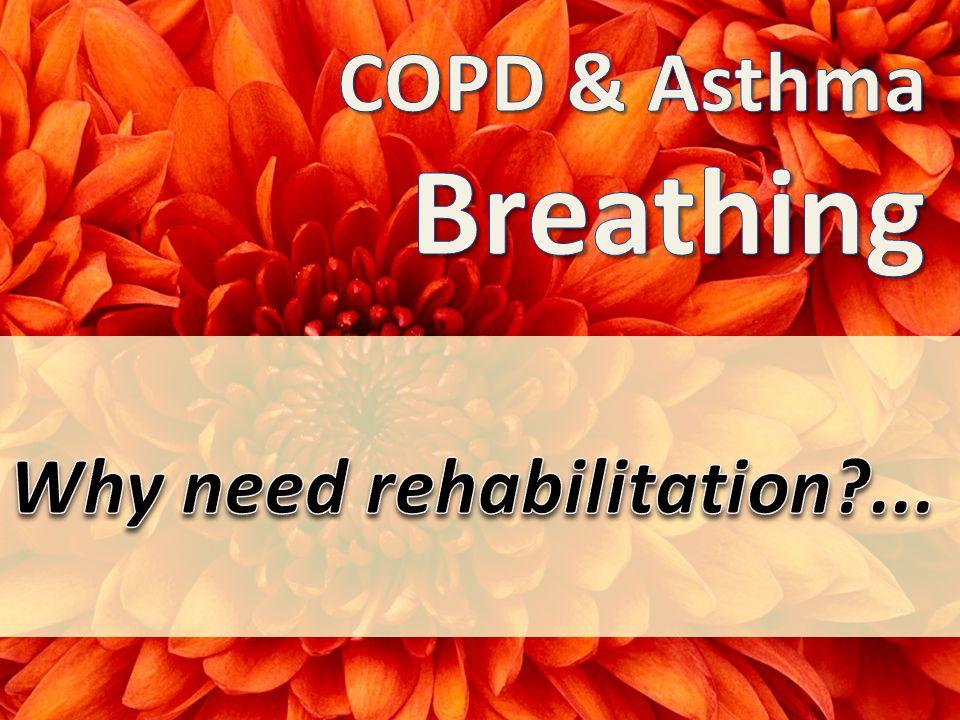 What is Pulmonary Rehabilitation .
