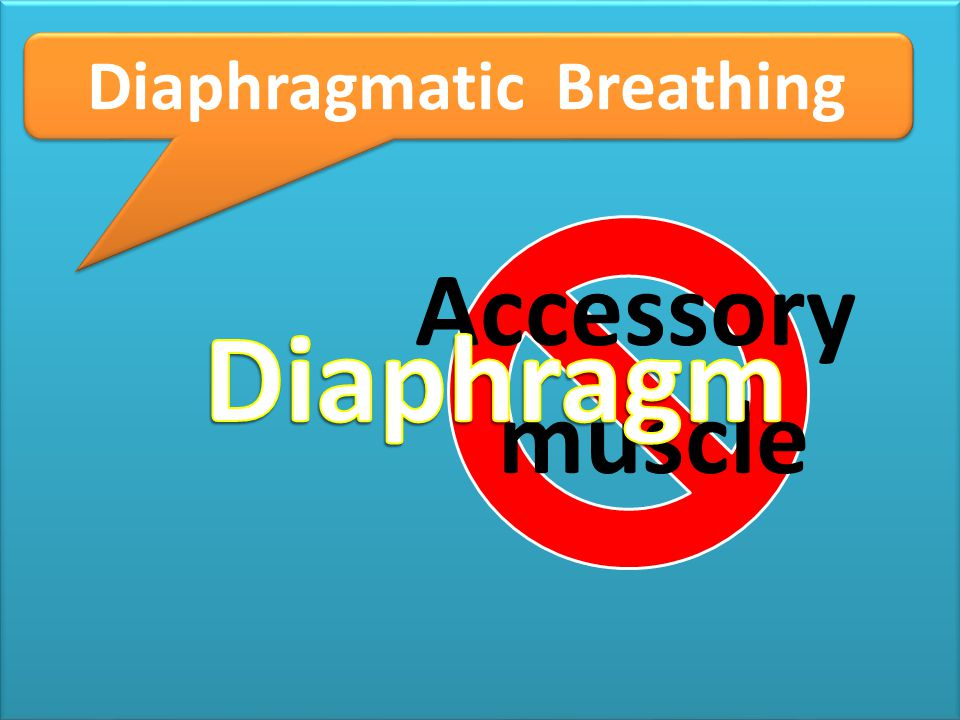 tr Diaphragmatic Breathing Accessory muscle