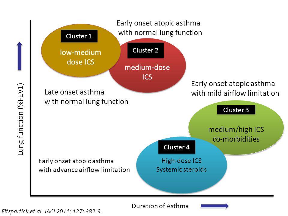 medium-dose ICS low-medium dose ICS medium/high ICS co-morbidities medium/high ICS co-morbidities High-dose ICS Systemic steroids High-dose ICS System
