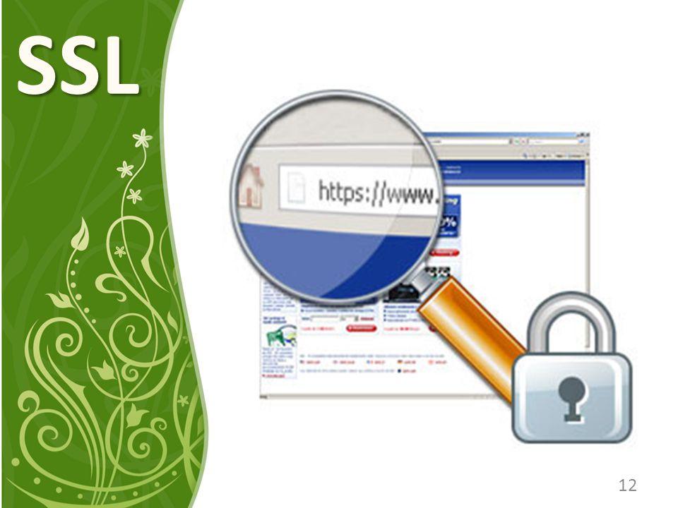 SSL 12