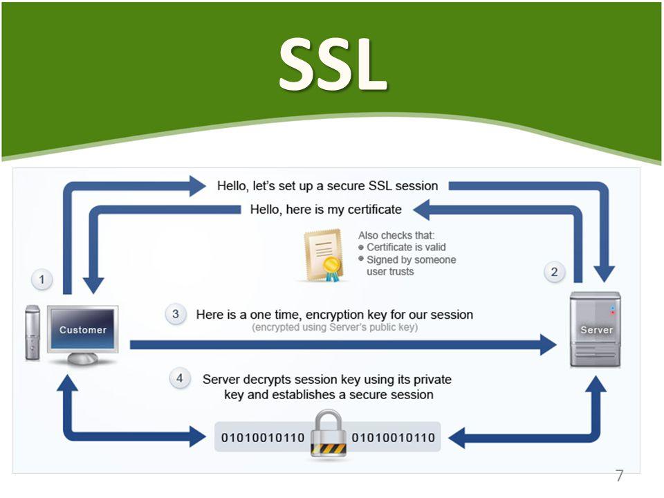SSL 7