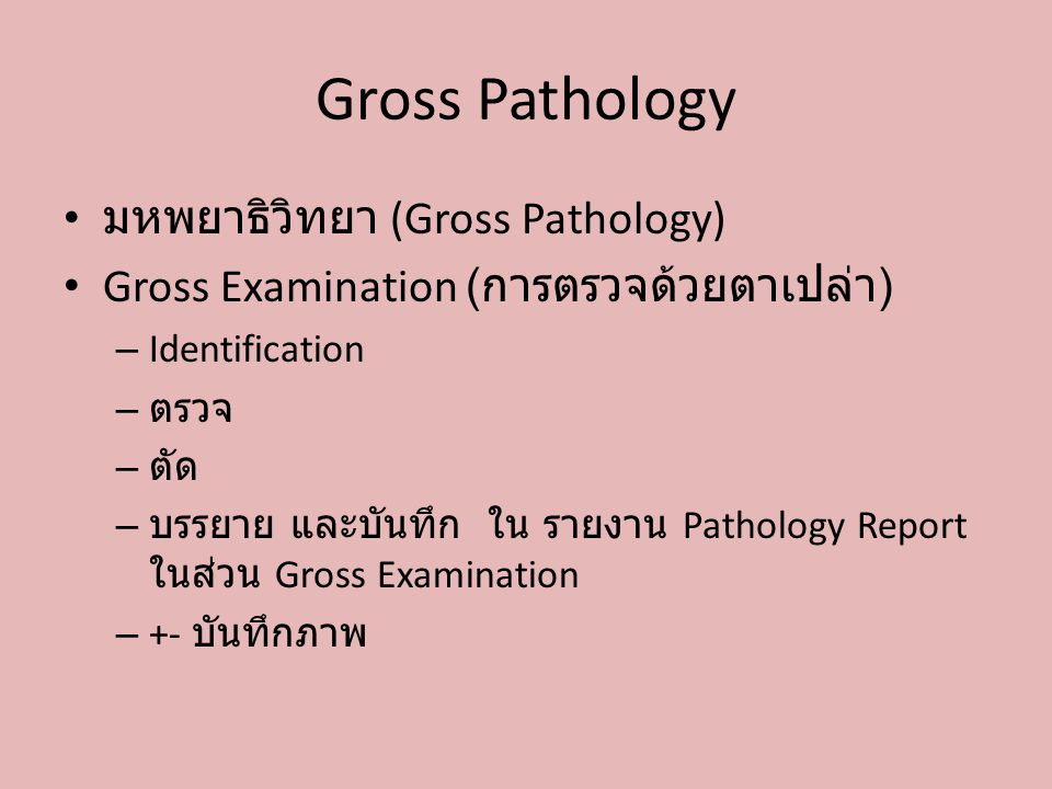 Gross Pathology มหพยาธิวิทยา (Gross Pathology) Gross Examination ( การตรวจด้วยตาเปล่า ) – Identification – ตรวจ – ตัด – บรรยาย และบันทึก ใน รายงาน Pat